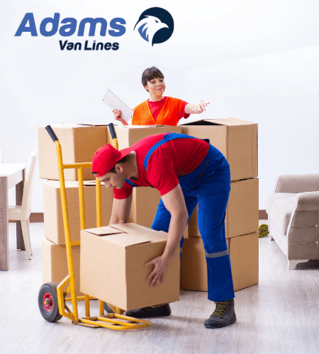 Adams - location miami packing services